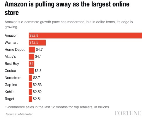Amazon_Is_Pulling_Way_Ahead_of_Other_Retailers_in_E-Commerce___Fortune_com.jpg